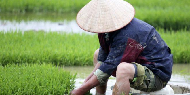 uhrzeit in vietnam